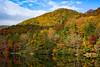 """Lake Trahlyta Shoreline #2"""
