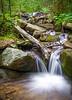 """Little Amicalola Creek #5"""