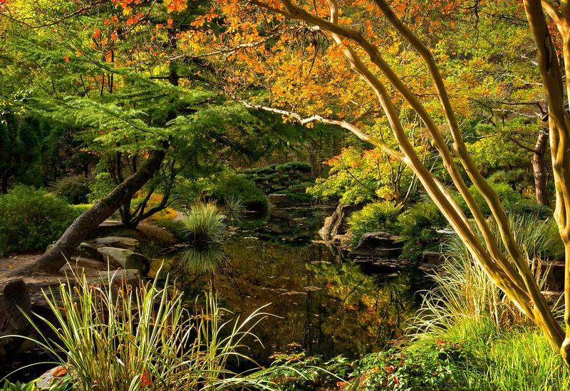 """Hidden Pond"""