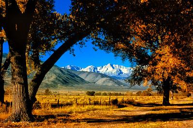 """""""High Sierra Farm"""""""