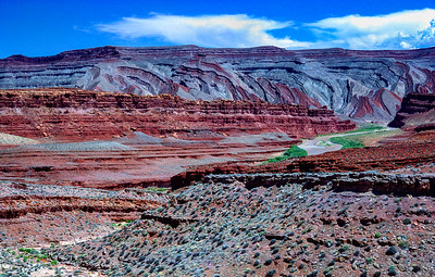 """The Green River in Canyonlands"""