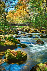 """Kephart Prong Trail Footbridge #1"""
