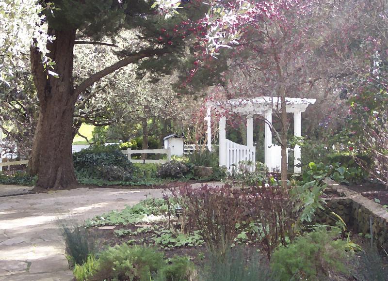 Vineyard courtyard
