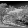 Hidden Falls Regional Park, Auburn, Ca. (IR conversion)
