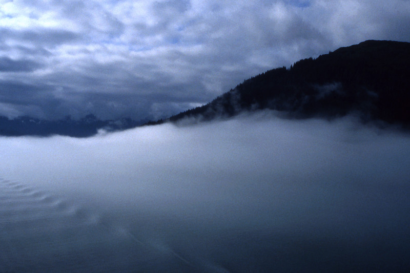 Fog, 1999<br /> Film Photography
