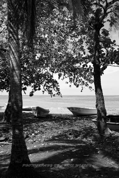 Costa Rica_04-13-08_0086