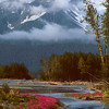 Alaskan Summer, 2000<br /> Film Photography