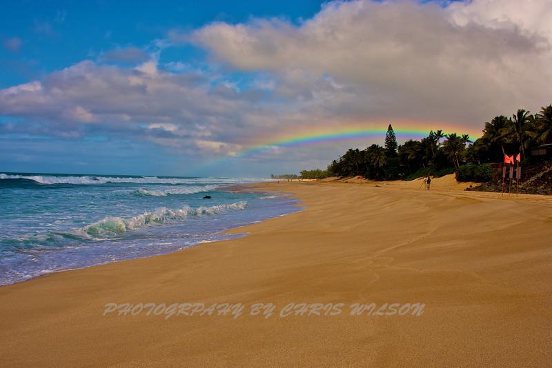 Hawaii North Shore_10-31-06_0002