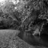 Costa Rica_04-13-08_0087