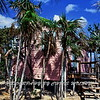 Guanna Pink House
