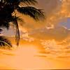 Hawaii North Shore_01-28-06_0227