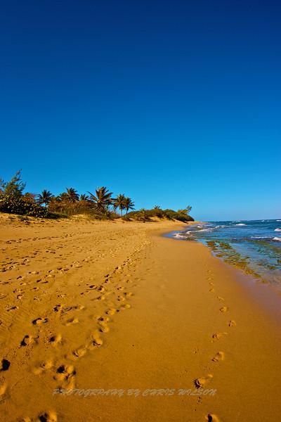 Puerto Rico_02-08-13_003