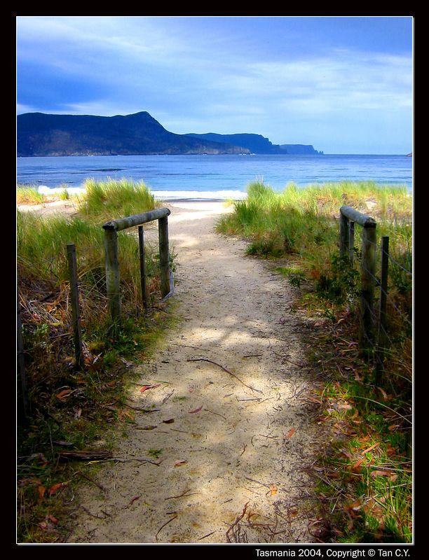 beach out-border
