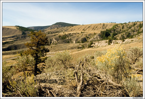 farwell canyon, central bc/canada ©monika petersen photography