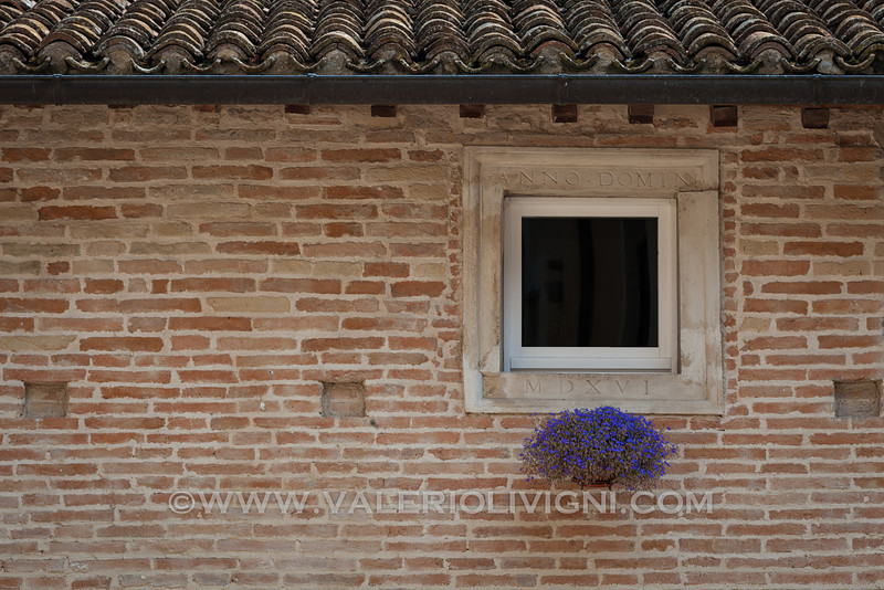 Window in Jesi