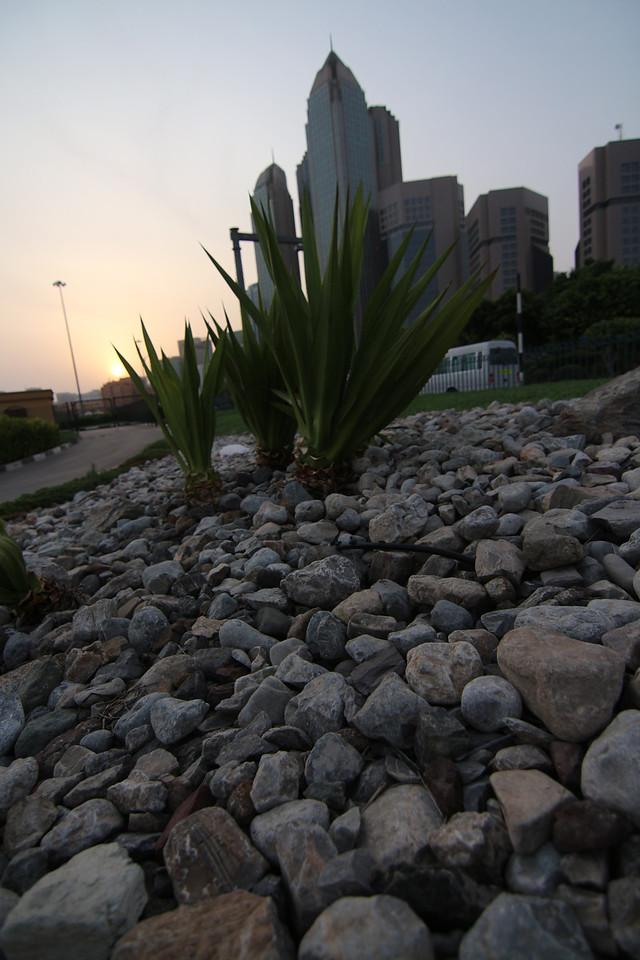 IMG_7328_Sunrise Corniche_015