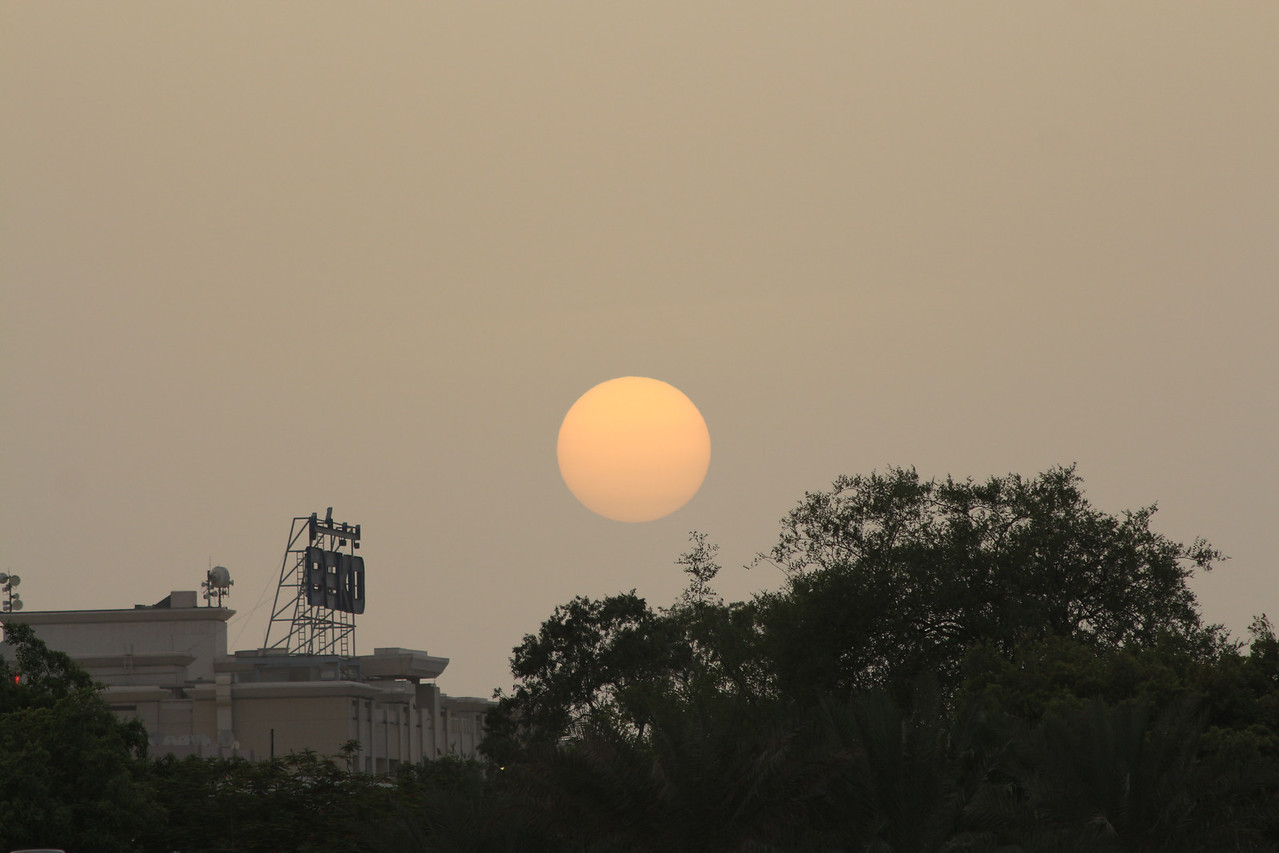 IMG_8166_Dubai Creek_072