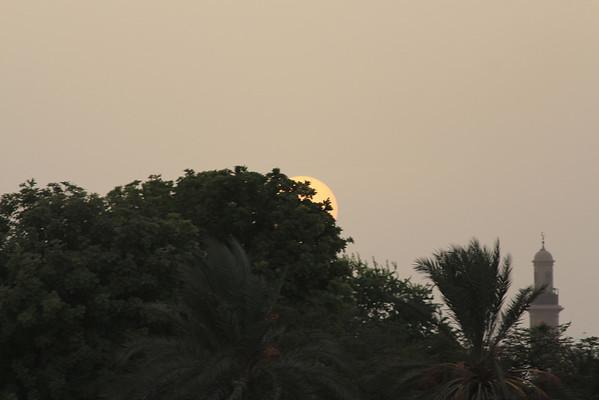 IMG_8164_Dubai Creek_070
