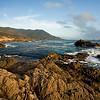 Central California Coast