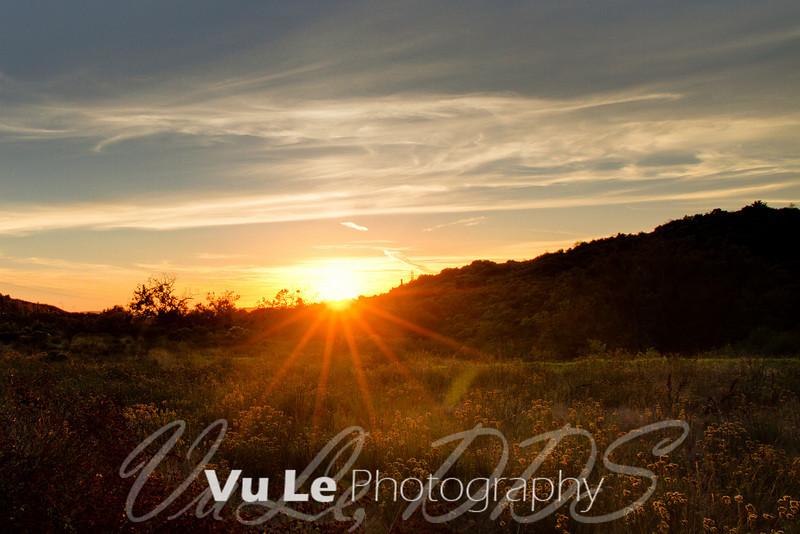 Sunset over wildflowers off El Toro Road
