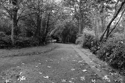 Colquitz River Park, Victoria, BC, Canada
