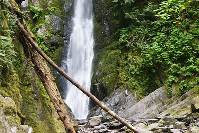 Goldstream Park, Vancouver Island, BC, Canada