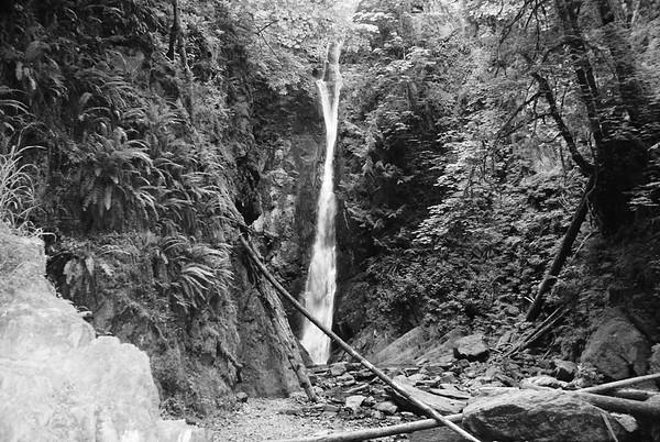 Goldstream Park - Waterfall Study