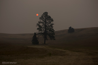 Sunrise through the Smoke – Pullman, WA
