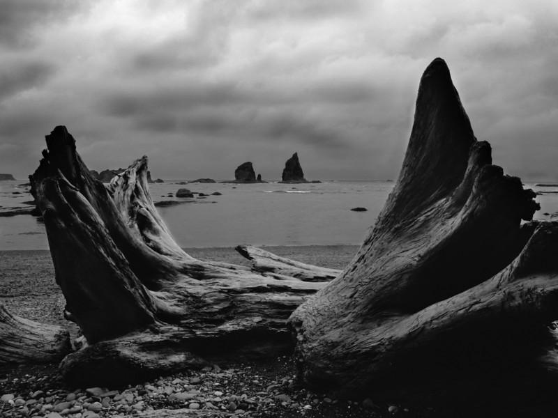 Storm Clouds on the Washington Coast