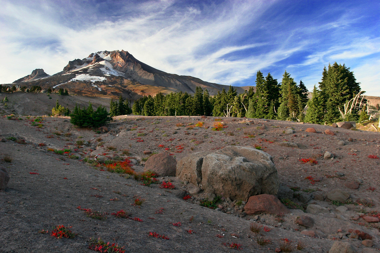 Mt. Hood Oregon, above Timberline Lodge.