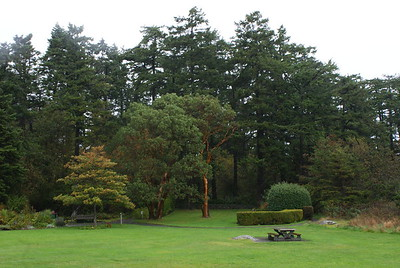 Saxe Point Park, Victoria, BC, Canada
