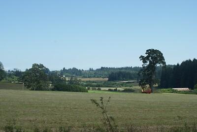 Farm on Saanich Peninsula - Vancouver Island BC