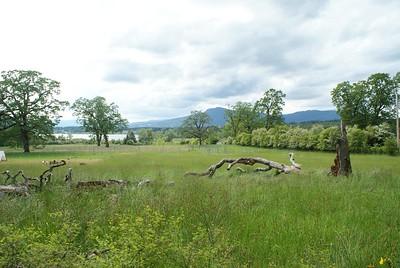 Farm near Lake Quamichan in the Cowichan Valley, BC