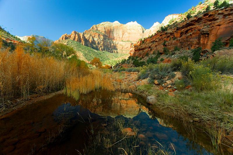 Zion reflection1