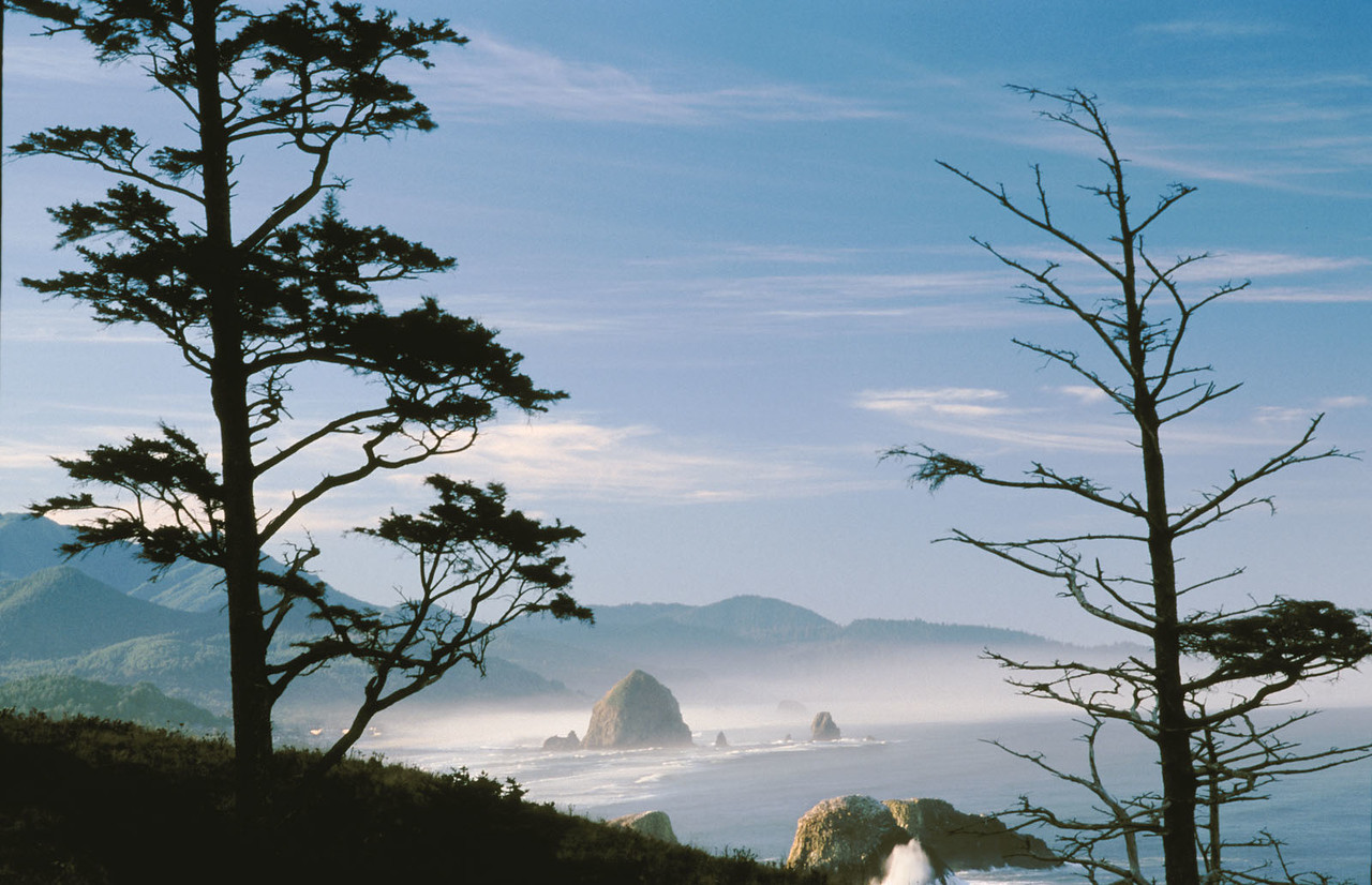 Ecola State Park, Cannon Beach, Oregon