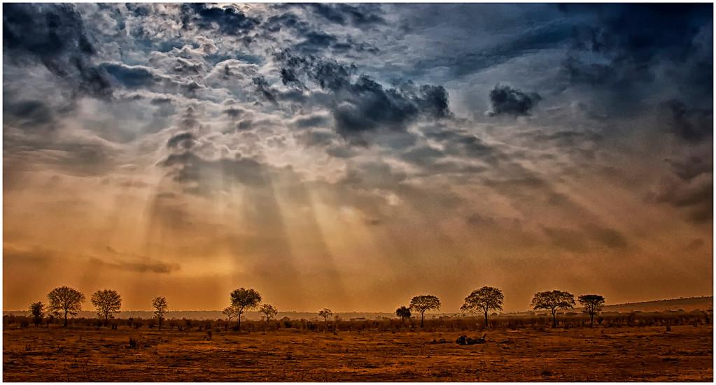 Serengetti sky