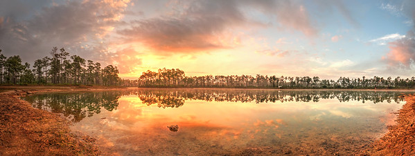 Sunrise @ Pine Glades Lake (panorama) Long Pine Key, Everglades National Park