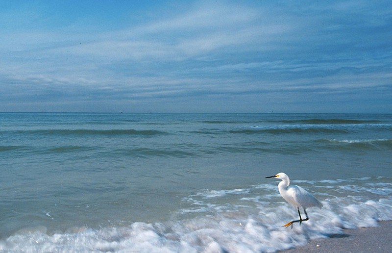 Waverunner, Naples, Florida