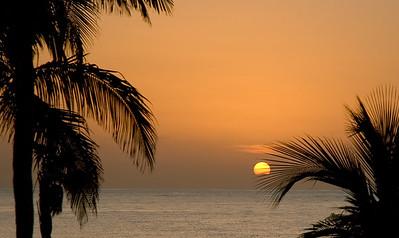 Sunrise & Palms