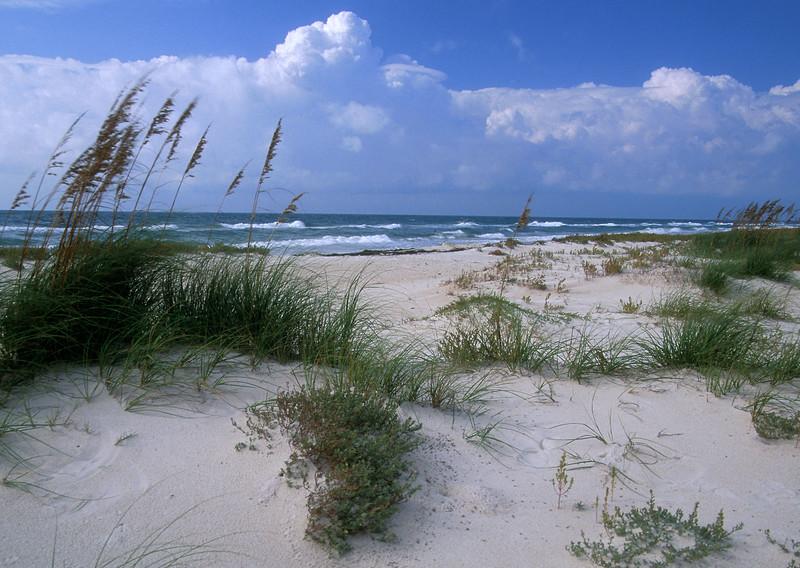 Beach on Mexico Beach, FL