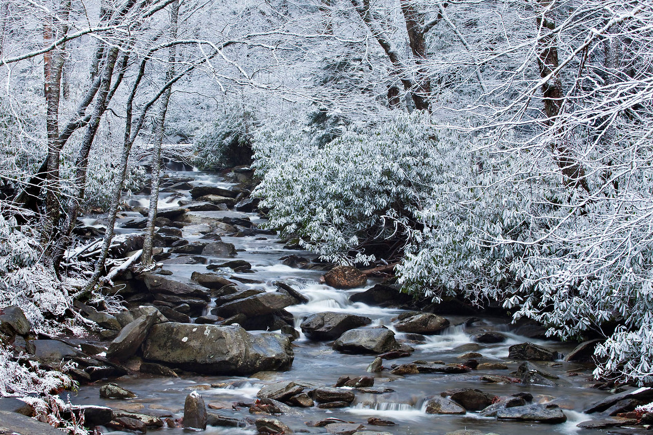 Early snow in the Smoky Mountains