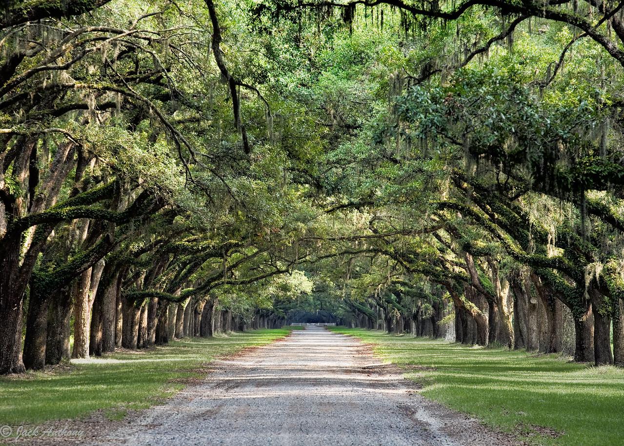 Wormsloe State Historic Site, Savannah, GA