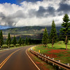 Maui, Hawaii Series<br /> Image #0127<br /> 2009
