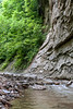 Pine Hills Nature Preserve - Waveland, IN