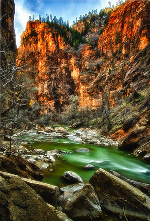 Zion Afternoon