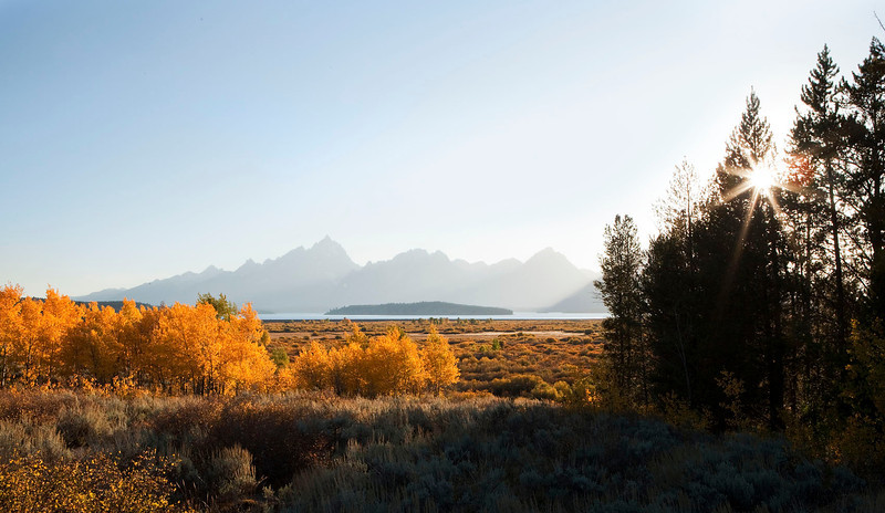 Fall aspens and mountains, Wyoming