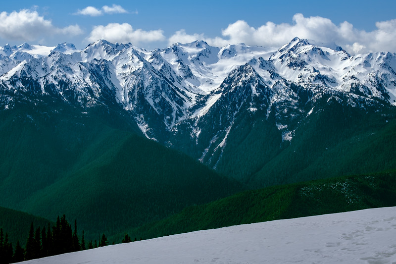 Olympic Mountains from Hurricane Ridge