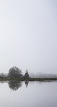 port meadow mist