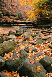 Fall at Mathiessen State Park, Illinois