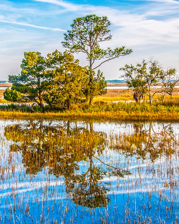 Hunting Island Reflection